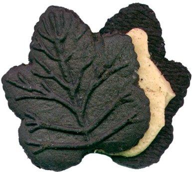 Turkey Hill Chocolate Maple Cookie
