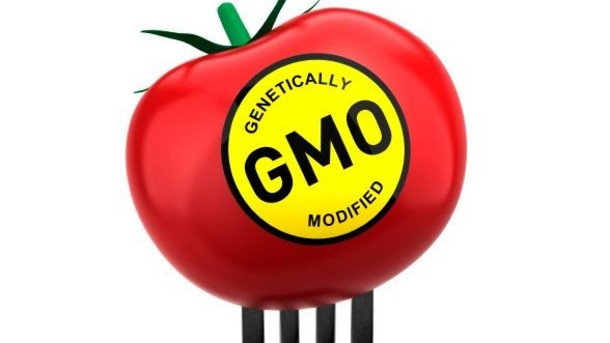 GMO Labeling Foods Produced With Genetic Engineering